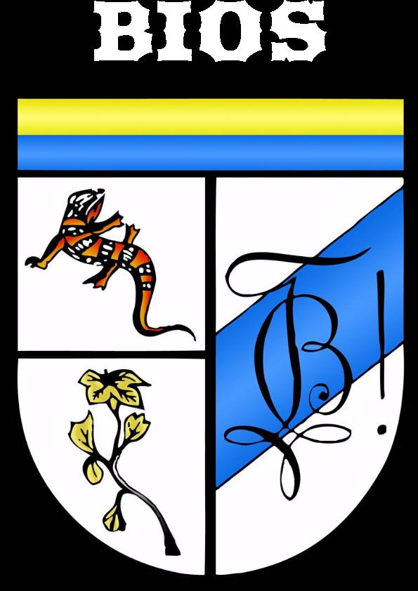 bios leuven